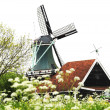 Windmill of Netherland — Stock Photo