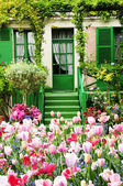 House with flower — Stockfoto