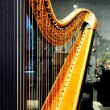 Stock Photo: Harp string