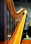 Harp string — Stock Photo