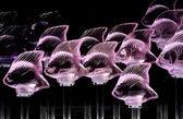 Fish decoration — Stock Photo
