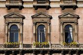 Ventana con flor en edificio clásico — Foto de Stock