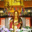 Statue in the buddhism temple — Foto Stock