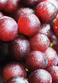 Fresh grape in close eye — Stock Photo