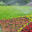 Stock Photo: Spray the garden full of flower
