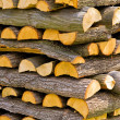 Wooden logs — Stock Photo #2171826