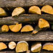 Wooden logs — Stock Photo #2202507