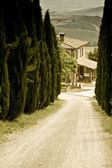 Typical Tuscan landscape — Photo
