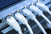 Network cables connected to switch — Stock Photo