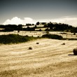 Typical Tuscan landscape — Stock Photo #2283157