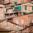 Siena historic architecture — Stock Photo #2305288