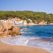 Royalty-Free Stock Photo: Costa brava