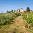 Typical Tuscan landscape — Stock Photo #2345214