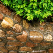 Stock Photo: Stone wall close-up
