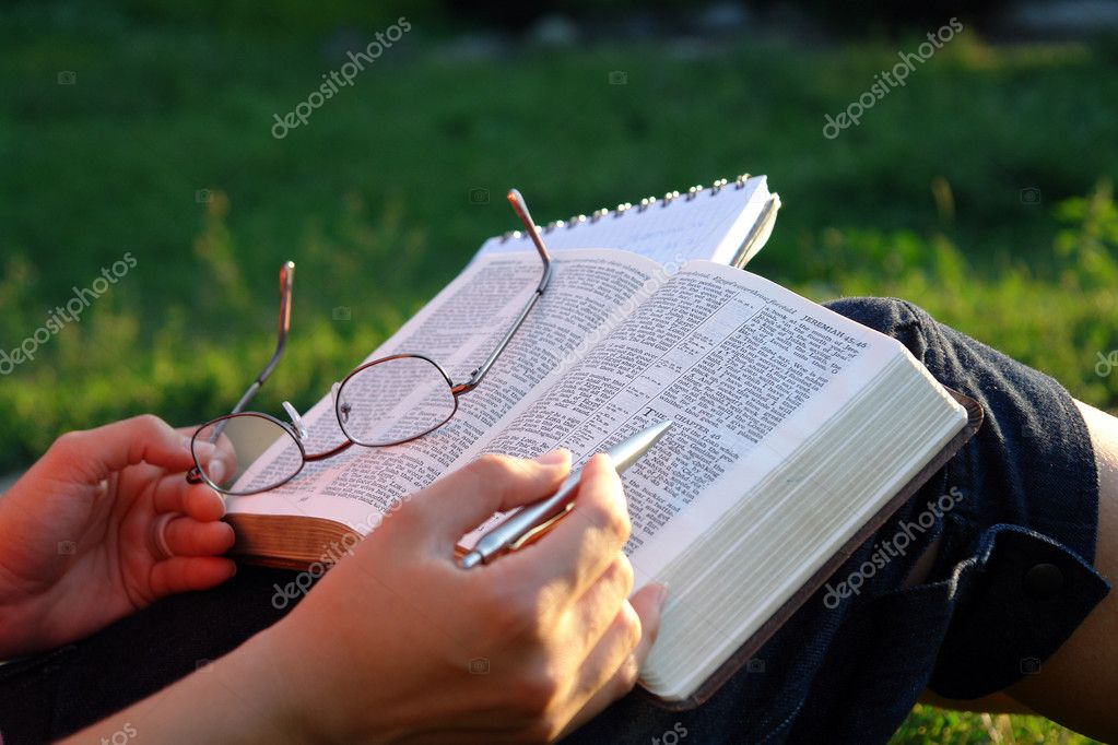  A view with a female person reading a bible in a park                                Stockfoto #2097109