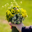 Child hand with flowers - Stock Photo