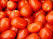Tomates roma — Foto de Stock