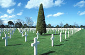 Normady American cemetery — Stock Photo