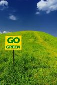 Idyllic green hill with fresh grass — Stock Photo
