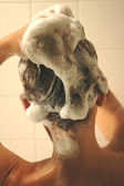 Shampoo — Stock Photo