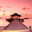 Jetty in the sunset — Stock Photo