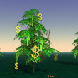 Dollars growing on a tree — Stock Photo