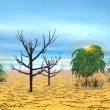 Dead and alive trees in the desert — Stock Photo