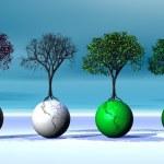 Four seasonal trees on four earth — Stock Photo #2149828