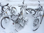 Bicycles covered by snow — Stock Photo