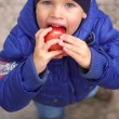 The boy eating an apple — Stock Photo
