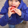 The boy eating an apple - Stock Photo