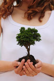 Woman holding a small tree in her hands — Stock Photo