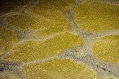 Liquid manure — Stock Photo