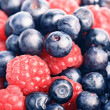Stock Photo: Many blueberries & raspberries