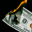 Burning one hudred dollars - Stock Photo