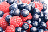 Many blueberries & raspberries — Stock Photo