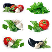 Vegetables group set — Stock Photo