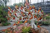 Vögel — Stockfoto