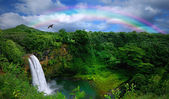 Top View of a Beautiful Waterfall in Haw — Stock Photo