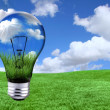Green Energy Solutions With Light Bulb M - Stock Photo