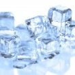 Cool Ice Cubes Melting on a  White Refle - Stockfoto