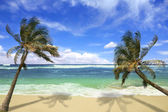 Island Pardise Beach in Hawaii — Stock Photo