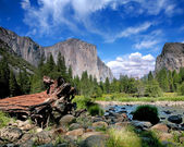 El Capitan View in Yosemite Nation Park — Stock Photo