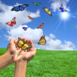 Happy Bright Landscape WIth Butterflies - Stock Photo