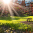 Bench in the park at Sunset — Stock Photo #2204755