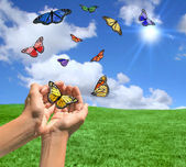 Happy Bright Landscape WIth Butterflies — Stock Photo