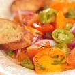 Tomato Salad With Bread and Red Onions — Stock Photo