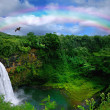 Top View of a Beautiful Waterfall in Haw — ストック写真