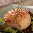 Scallop on a Green Plate Dressed With Ch - Stock Photo