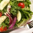 Delicious Healthy Salad With Fork — Stock Photo